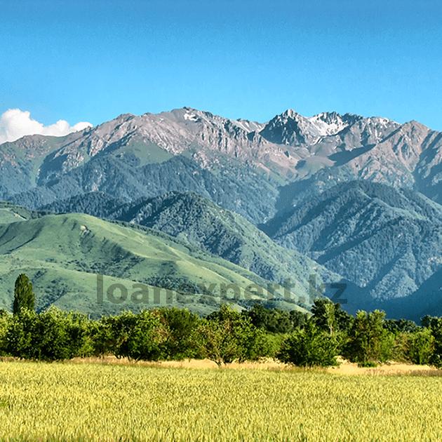 Как взять займ без справки о доходах: Талгар